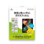 Corallo NU GLASS T 2枚入り for iPad Pro 12.9 (2018/2020/2021) (Clear)